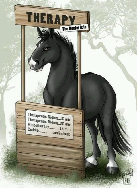 Therapy: the doctor is in. Image of a horse at a wooden stand.